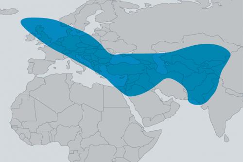 Turksat-4b Spot Beams